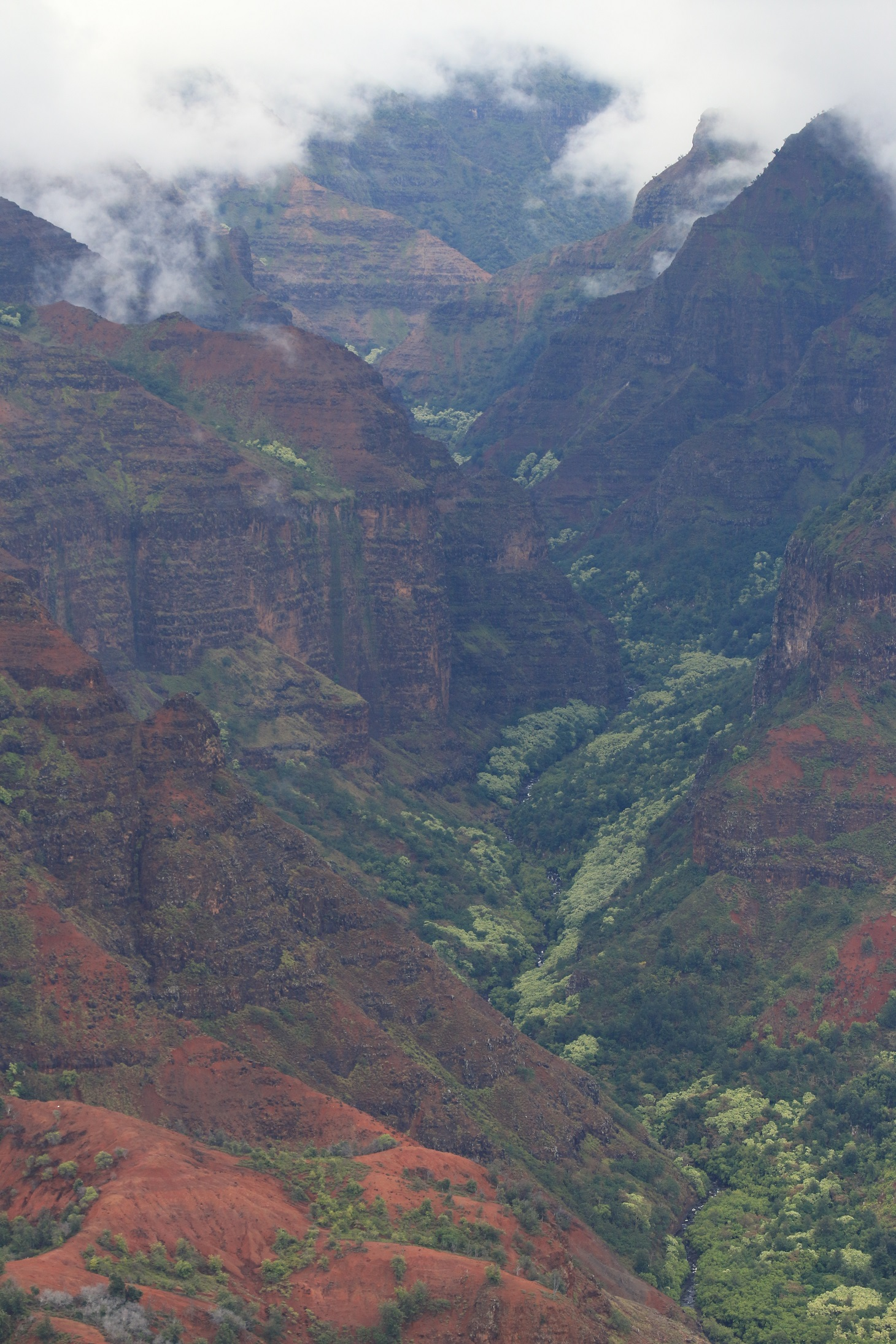 Waimea Canyon dans la brume