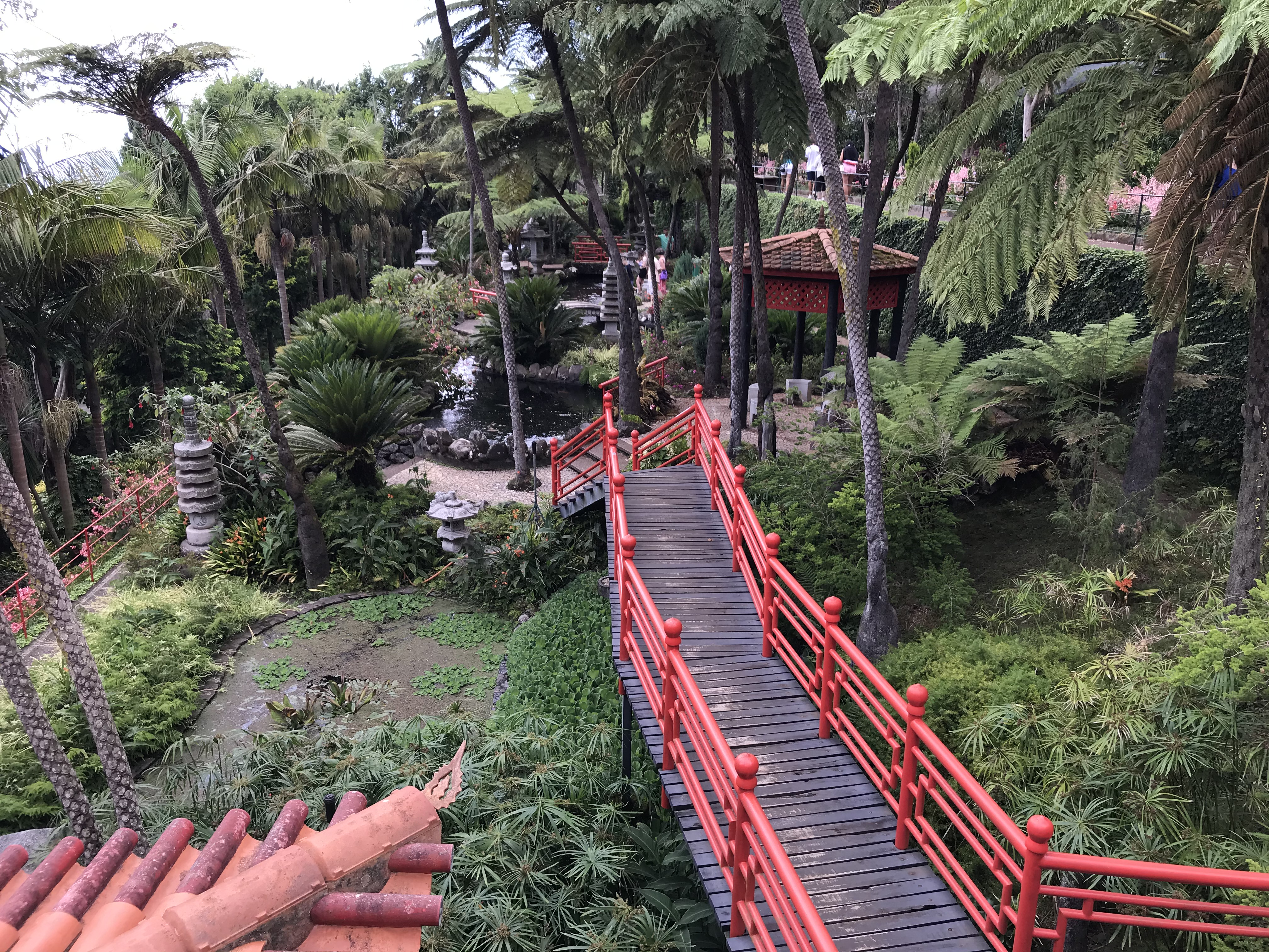 """Une partie """"japonaise"""" des jardins du Monte Palace"""